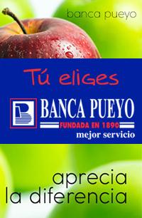 Banca Pueyo Baloncesto