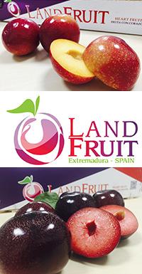 Land Fruit (Diputación Badajoz)